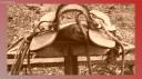 COMUNIDAD CARILAF CHIFCA-033