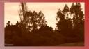 COMUNIDAD CARILAF CHIFCA-039